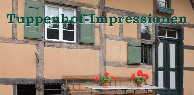 Fotoimpressionen vom Tuppenhof